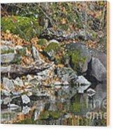 On The Edge Of The Lake Wood Print