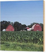 On The Farm In Belle Plaine Wood Print