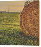 On The Field  Wood Print