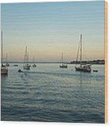 On The Hook In Saint Augustine Wood Print