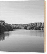 On The Lake In Black And White Wood Print by Judy  Waller