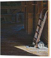 On The Loading Dock Wood Print