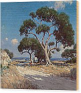 On The Old Blanco Road Southwest Texas Wood Print