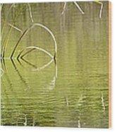 On The Pond Wood Print