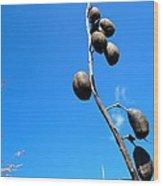 On The Prairie #11 Wood Print