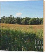 On The Prairie #5 Wood Print