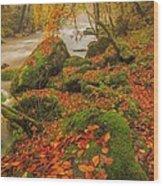 On The Riverside Wood Print