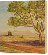 On The Road To Broken Hill Nsw Australia Wood Print