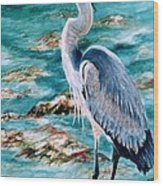 On The Rocks Great Blue Heron Wood Print by Roxanne Tobaison