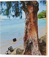 On The Shore 1. Mauritius Wood Print