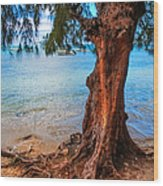 On The Shore. Mauritius Wood Print