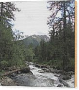 On The Shore Of A Mountain River With Mountain View Wood Print