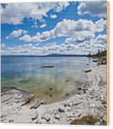 On The Shores Of Yellowstone Lake Wood Print