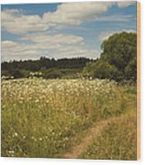 On The Summer Meadow II. Russia Wood Print