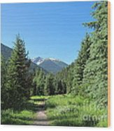 On The Trail Around Lightning Lake Wood Print