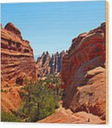 On The Trail At Arches Np Wood Print