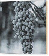 On The Vine  Bw Wood Print