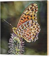 On The Wings Of A Butterfly... Wood Print