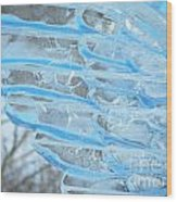On The Wings Of A Winter Wind Wood Print