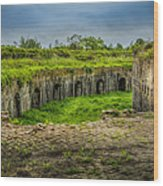 On Top Of Fort Macomb Wood Print by David Morefield