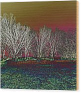 On Top Of The Hill Wood Print