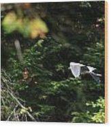 On Winged Flight Wood Print