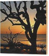 Once A Mighty Oak Wood Print