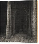 Once Upon A Time Wood Print by Tim Nichols