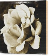 One Fragile Rose Wood Print