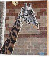 One Giraffe Wood Print