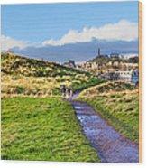 One Golden Day In Edinburgh's Holyrood Park Wood Print