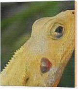 One Happy Lizard Wood Print