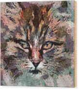 One More Cat Wood Print by Yury Malkov