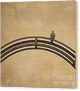 One Pigeon Perched On A Metallic Arch. Wood Print