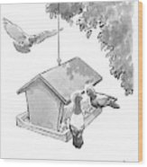One Pigeon Speaks To Another At A House-shaped Wood Print