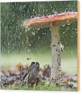 One Rainy Day Wood Print by Tim Gainey