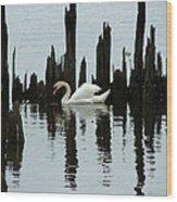 One Swan Wood Print