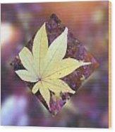 One Yellow Maple Leaf Wood Print