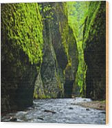 Oneonta River Gorge Wood Print by Inge Johnsson