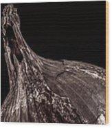 Onion Skin Wood Print by Bob Orsillo