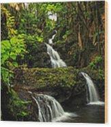 Onomea Falls Wood Print