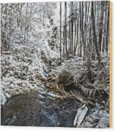 Onomea Stream In Infrared Wood Print