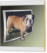 Oof Dog Wood Print
