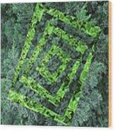 Op Art Garden 2 Wood Print