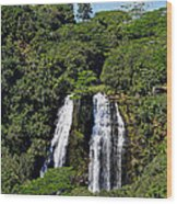 Opaekaa Falls In Kauai Wood Print