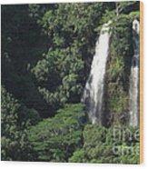 Opeaka'a Falls 2 Wood Print by Deborah Smolinske