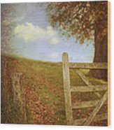 Open Country Gate Wood Print