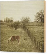 Open Fields Wood Print