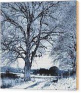 Open Gates Wood Print