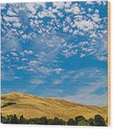 Open Sky Wood Print